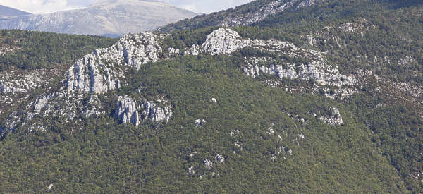 landscape mountain rock cliff forest cliffs